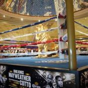 Mayweather Cotto Fight