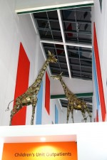 Giraffes at Children's Outpatients