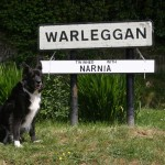 Warleggan Twinned with Narnia