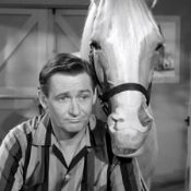 Wilbur & Mr Ed