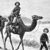 US Camel Corps in 1857